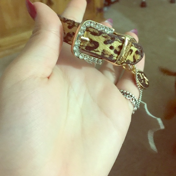 50 Off Coco Lane Couture Jewelry Couture Dog Collar