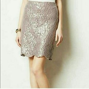 Anthropologie Dresses & Skirts - Anthropologie Revelion Skirt NEW