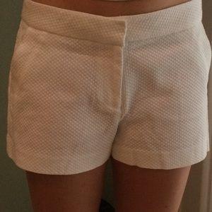 C. Wonder Pants - NWOT C. Wonder shorts
