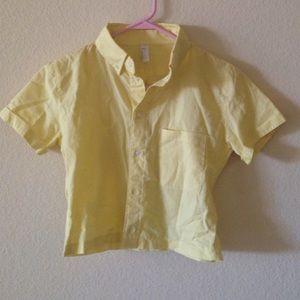 American apparel button down crop top