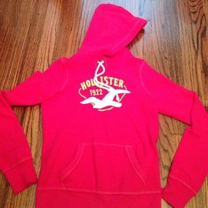 Hollister Sweaters - Hollister lounge pullover fleece hoodie Small