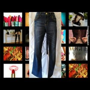 Baby Phat Denim - Baby Phat silver label jean