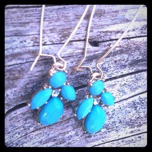 Adorable Turquoise Earrings