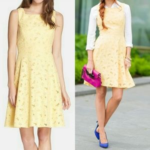 Maggy London Dresses & Skirts - Maggy London Embroidered Yellow Fit & Flare Dress