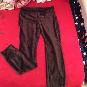 DSW Pants - Bundle!
