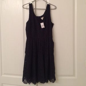 NWT JCrew navy lace dress