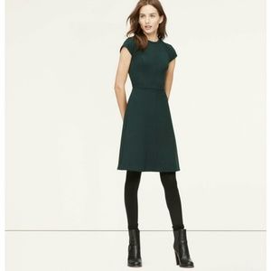 {loft} petite flared seamed dress