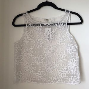 NWT BB Dakota Sheer Organza Crop Top