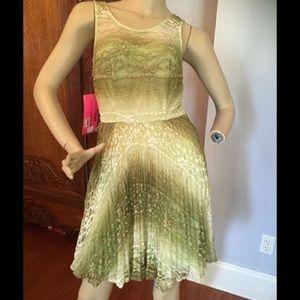 Betsey Johnson Sage Lace Dress