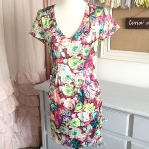 Succulent Watercolored Sheath Dress
