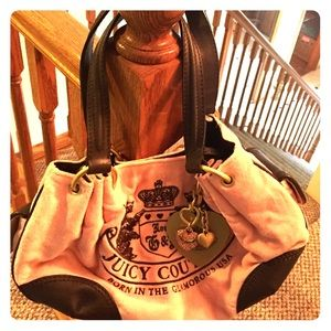 Velvet juicy couture purse
