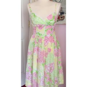 Lilly Pulitzer Spring In Bloom Dress
