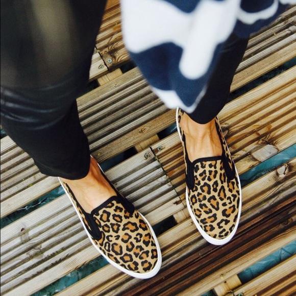 6ccee59d08c0 Steve Madden Shoes | Leopard Print Flats Slip On Tennis Suede | Poshmark