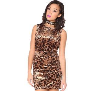 Nightcat Velvet Dress in Leopard