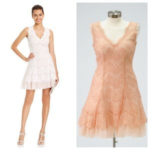 Betsy Adam Lace Tulle Dress