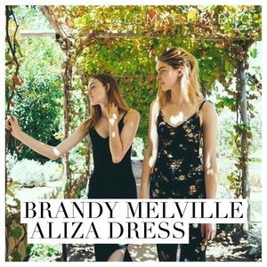 Brandy Melville Black Floral Aliza Dress