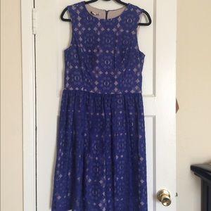 Ivy & Blu lace blue dress