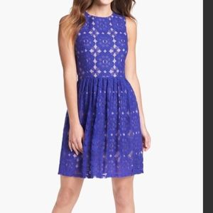 Ivy & Blu Dresses & Skirts - Ivy & Blu lace blue dress
