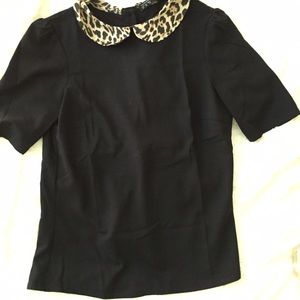Zara Tops - Adorable Black Top with Leopard Print Color