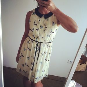 Zara Dresses & Skirts - Yellow swallow print dress from Zara size medium