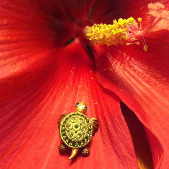 Jewelry - Sea Turtle Pin