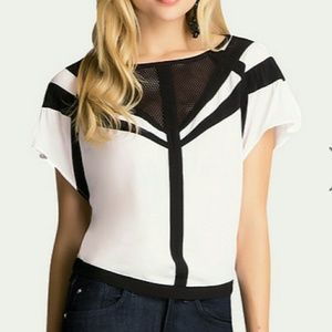 bebe Tops - Colorblock Flutter Top