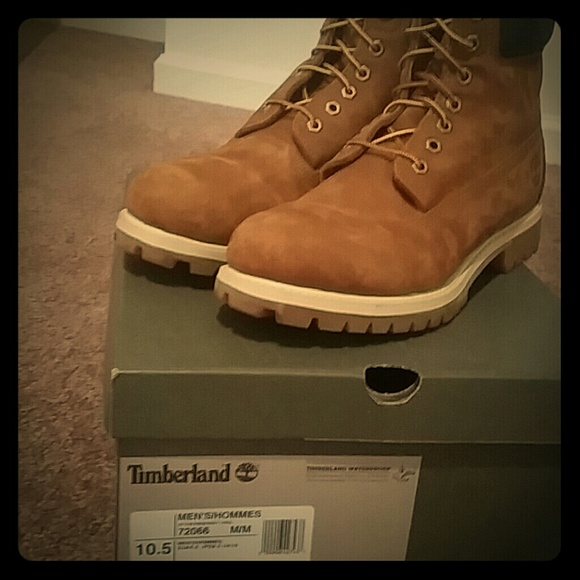 saletimberland boots 6 inch rust nubuck sz 10 12