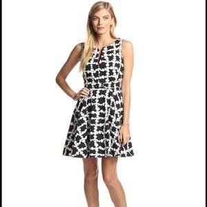 Eva Franco Dresses & Skirts - 🎉2x HP🎉 Eve Franco Fit and Flare dress