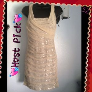 💘Host Pick💘 Silver Sequins w/Tan Mesh on top