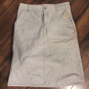 Pilcro skirt from Anthropologie