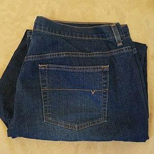 Venezia Denim - Venezia jeans by Lane Bryant