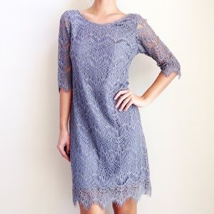 | new | grey lace dress