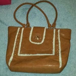 Handbag or carry all purse bag