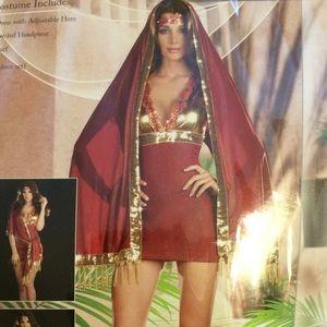 "Dresses & Skirts - Bolly ""Ho"" Halloween Costume"