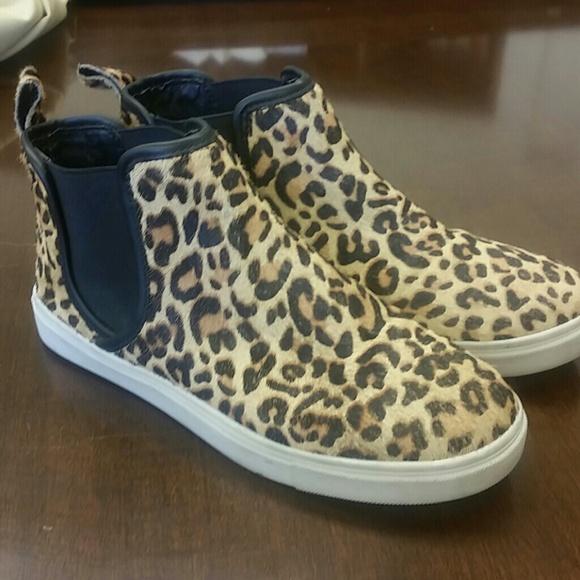 975e3b69599 Steve Madden Elvinn Leopard High Top Sneaker
