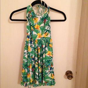 American Apparel Dresses & Skirts - Parrot Print American Apparel Dress