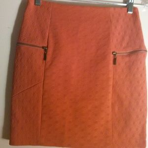 Fitted Skirt perfect for FALL?????? **NWOT