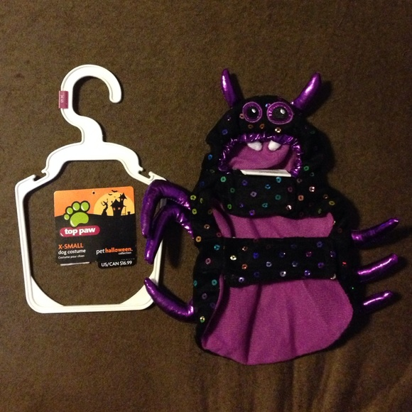 Spider X-Small Dog/Cat Halloween Costume & TOP PAW Other | Spider Xsmall Dogcat Halloween Costume | Poshmark