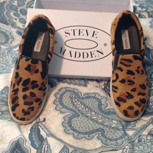 daa03c095e8 Steve Madden Ecentric Leopard Sneakers 8