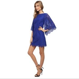 Blue Lace Shift Dress w/ Bell Sleeves