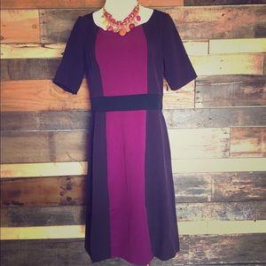 NWT Colorblock sheath dress