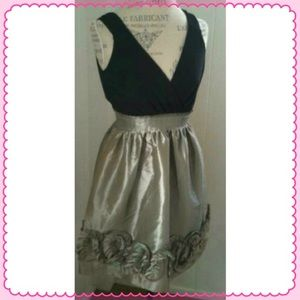 BCBG Dresses & Skirts - BCBG TAFFETA & JERSEY PARTY DRESS