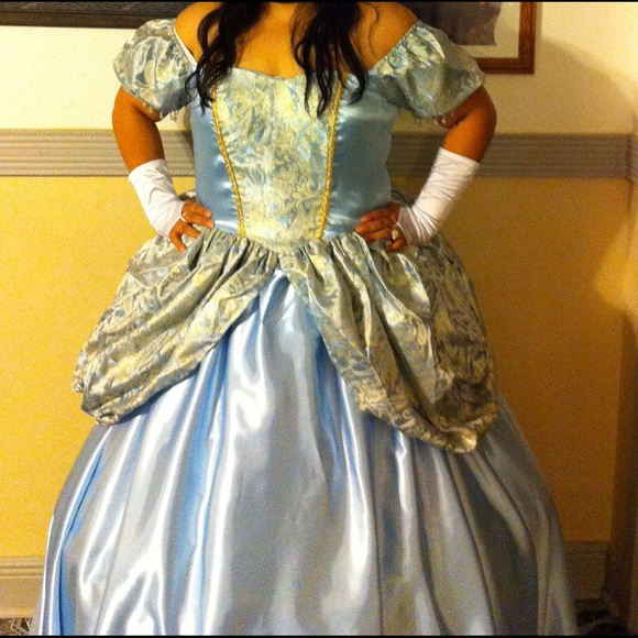 Dresses | Plus Size Cinderella Dress Gown | Poshmark
