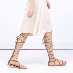 cdb719ea0b08 Zara Shoes - ZARA Gladiator Flat Lace Up Leather Sandals in Tan