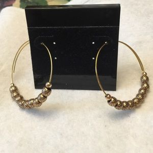 Alex & Ani Jewelry - Alex @ Ani Euphrates endless pierced hoop earring