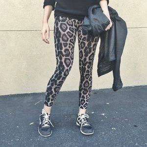 Pants - Leopard Print Leggings