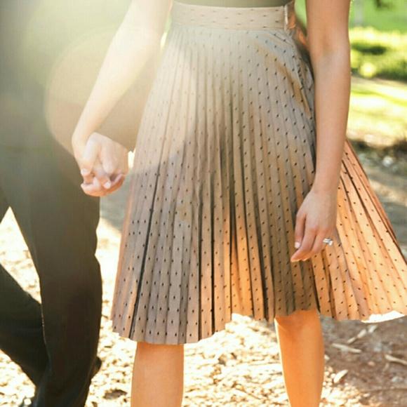 c1c959bf5 Lucy Paris Skirts   Dot Tulle Pleated Skirt   Poshmark