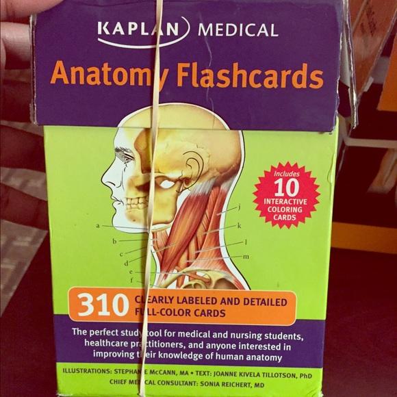 Other Human Anatomy Flash Cards Poshmark