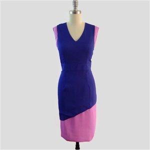 Dresses & Skirts - NWT Lilac & Purple Color Block Sheath Pencil Dress