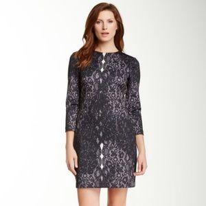Cynthia Steffe Kendall Lace Print Dress